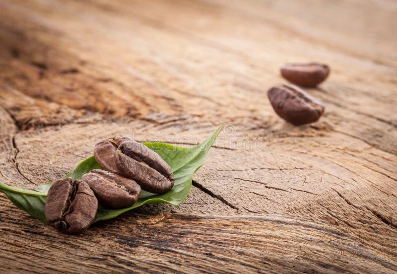 Kaffeebohnen und grünes Blatt auf dem Schmutz hölzern lizenzfreie stockbilder