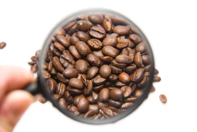 Kaffeebohnen und Vergrößerungsglas lizenzfreie stockbilder