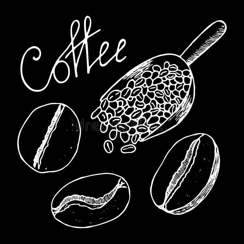 Kaffeebohnen und voll schaufeln von ihnen Weiße Konturnhandgezogene Skizze Vektor-Illustration lokalisiert auf schwarzem Hintergr stock abbildung