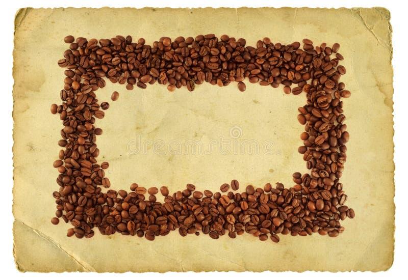 Kaffeefeld lizenzfreie stockbilder