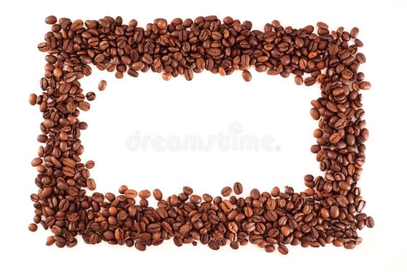 Kaffeefeld stockfotos