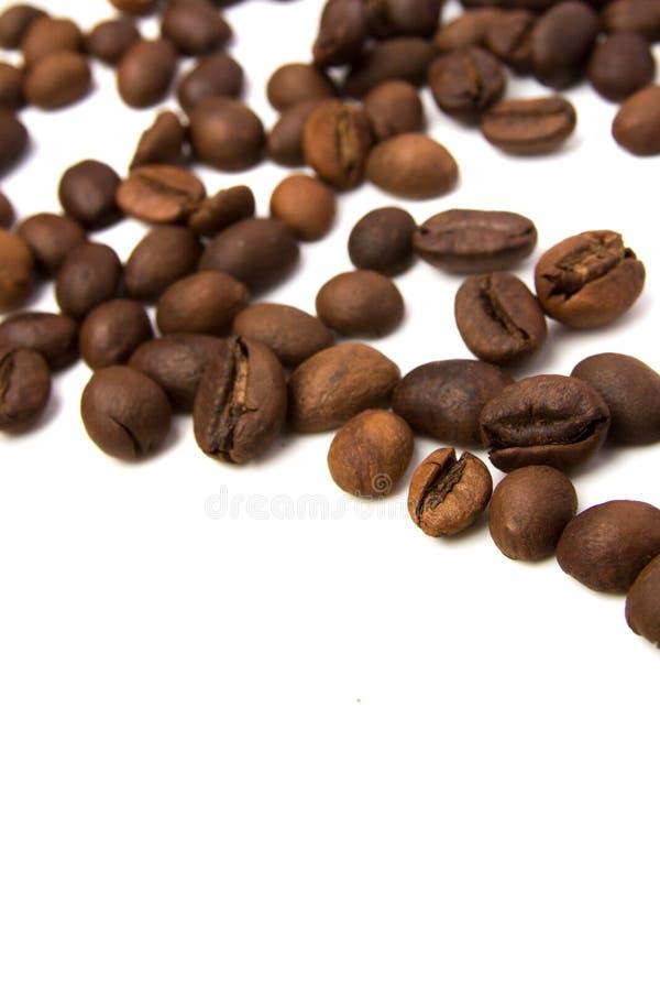 Kaffeekörner auf weißem Grund lizenzfreie stockbilder