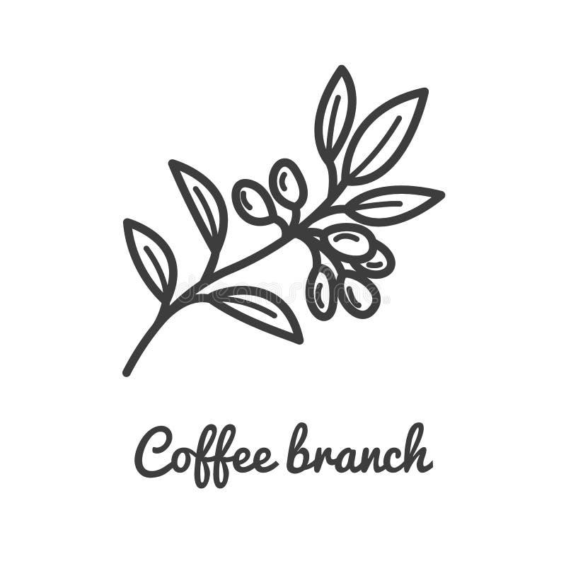 Kaffeeniederlassungsikone Provinz des Kaffee-Plant Niederlassung der Kaffeeikone in der Linie Artentwurf Auch im corel abgehobene stock abbildung