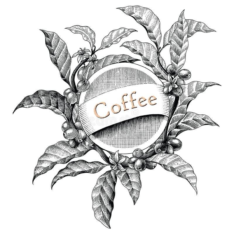 Kaffeerahmenhandzeichnungsweinlesestichillustrations-Logost. vektor abbildung