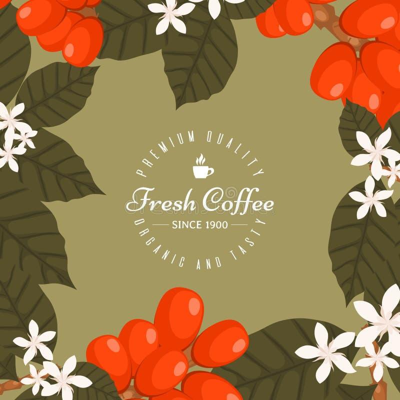 Kaffeestubeplakat, Fahnenvektorillustration Morgenkaffee frisch und geschmackvoll Organische und erstklassige QualitätsKaffeebohn lizenzfreie abbildung