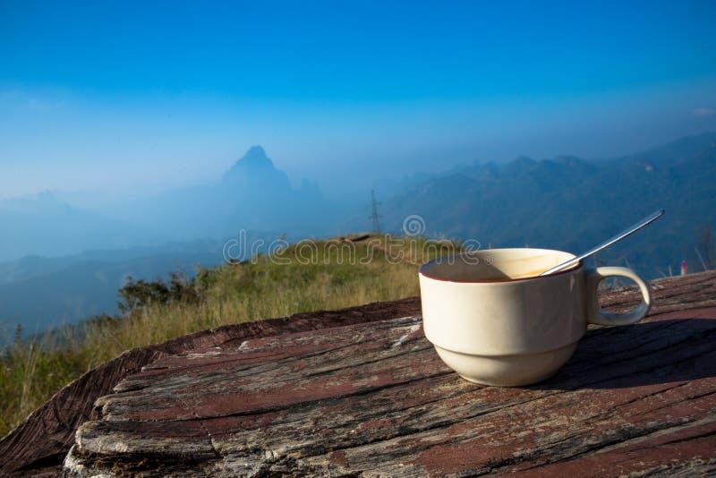 Kaffeetasse am Berg bei Phou Khoun - Laos stockfotos