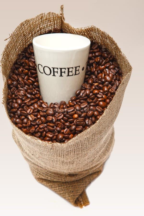 Kaffeetasse in den Bohnen lizenzfreie stockbilder