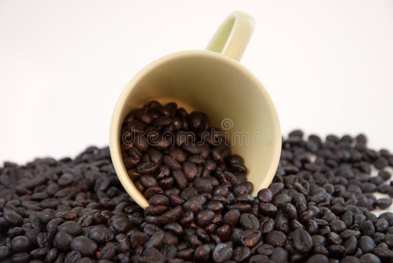 Kaffeetasse mit Kaffeebohnen lizenzfreies stockbild