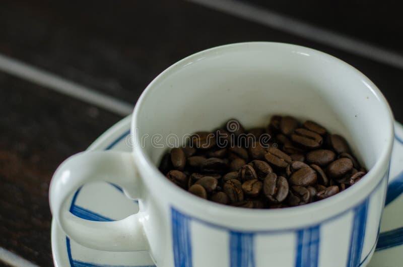 Kaffeetasse mit Kaffeebohnen der guten Qualität innerhalb 4 lizenzfreie stockbilder