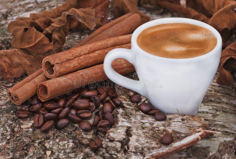 Kaffeetasse mit Zimt und Kaffeebohnen lizenzfreie stockbilder