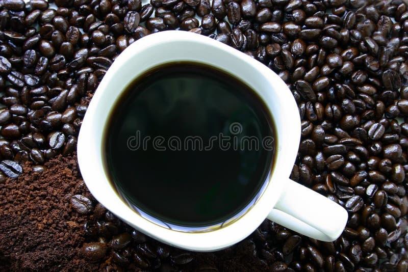 Kaffeetasse umgeben durch Kaffeebohnen lizenzfreie stockfotos