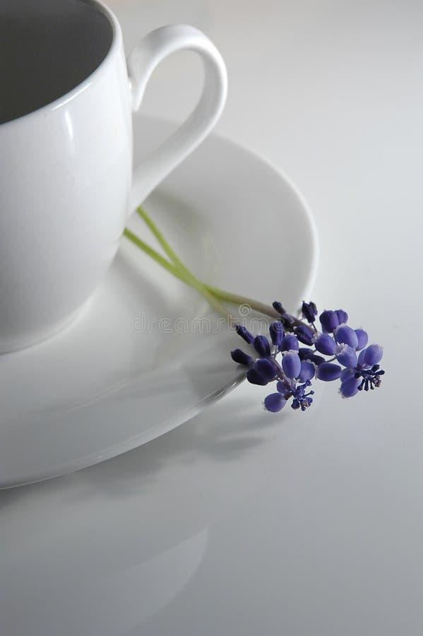 Kaffeetasse und Blume lizenzfreie stockbilder