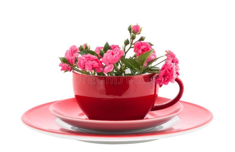 kaffeetassen mit rosafarbenen rosen stockfoto bild von nahaufnahme getrennt 25952130. Black Bedroom Furniture Sets. Home Design Ideas