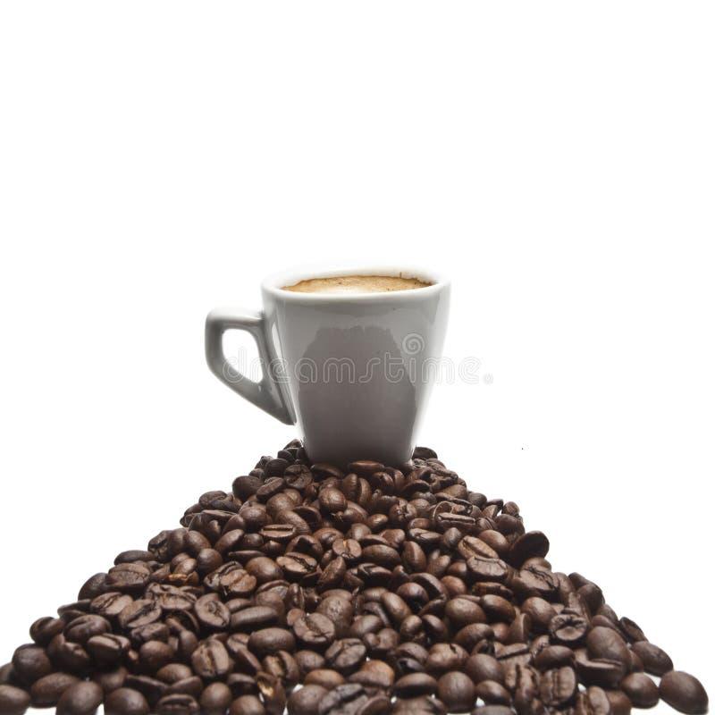 Download Kaffekopp fotografering för bildbyråer. Bild av endast - 27284205