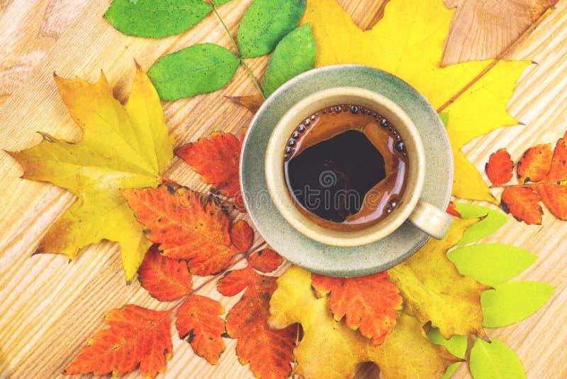 Kaffekopp och höstsidor över wood bakgrund royaltyfria bilder