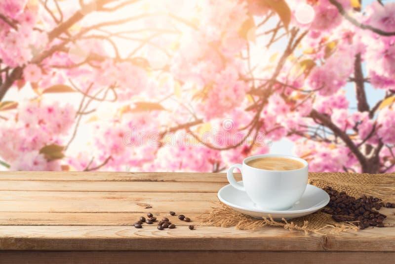Kaffekoppen med kaffebönor på trätabellen över körsbärsrött träd för blomning gjorde suddig bakgrund med kopieringsutrymme fotografering för bildbyråer