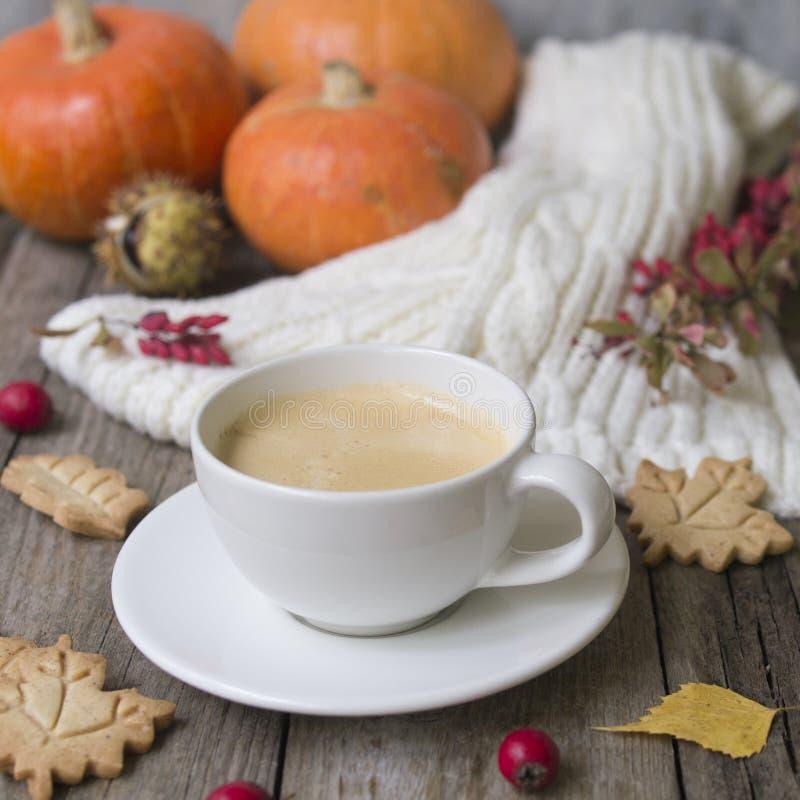Kaffekoppen, stucken halsduk, torkar sidor, kakor, pumpa, kastanjer, hagtorn, och barberryen bär frukt på en träbakgrund arkivbilder