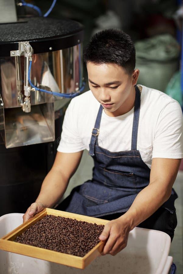 Kaffeproduktion i fabrik royaltyfri foto