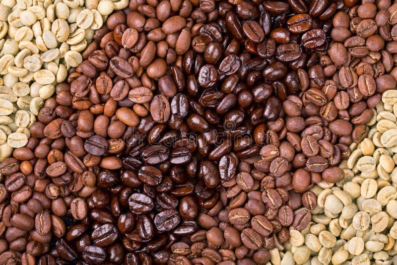 Kaffeval fotografering för bildbyråer