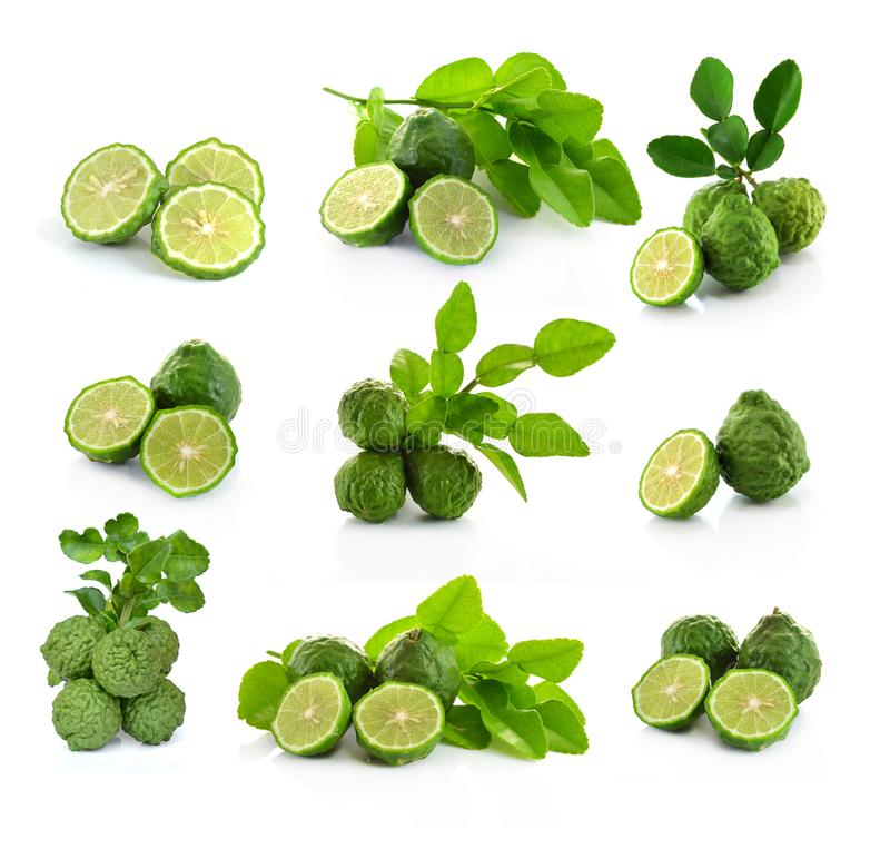 Kaffir Lime or Bergamot fruit on white background royalty free stock photography
