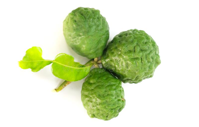 Kaffir lime white background in studio. Kaffir lime Close up for Isolated stock photo