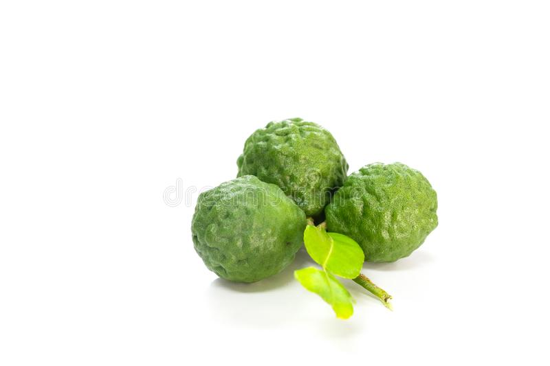 Kaffir lime white background in studio. Kaffir lime Close up for Isolated royalty free stock photo