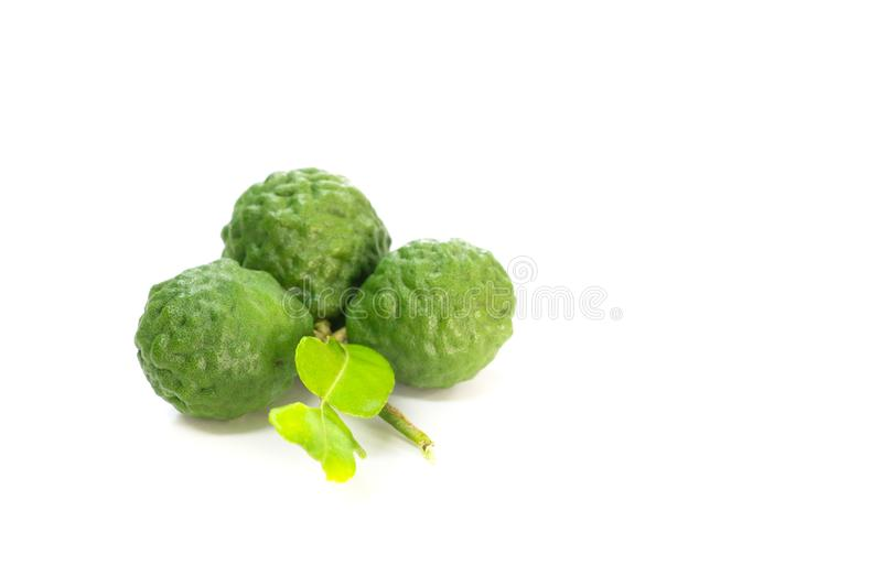 Kaffir lime white background in studio. Kaffir lime Close up for Isolated stock image