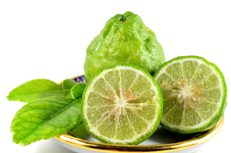 Kaffir lime. Leaves and fruits, Citrus hystrix, Family Rutaceae, Central of Thailand stock images