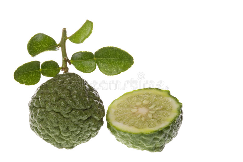 Kaffir Lime Macro. Isolated macro image of a Kaffir Lime stock image