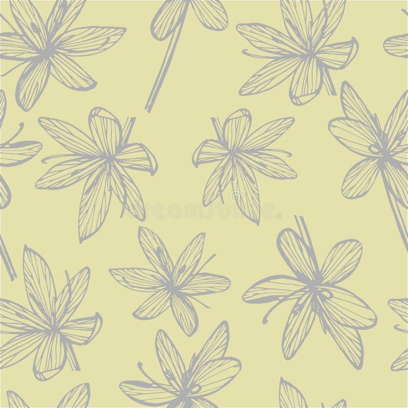 Kafirliljablommor Samling av hand drog blommor och v?xter bostonian Upps?ttning bakgrundskortet blommar reng?ringsduk f?r tappnin arkivbilder
