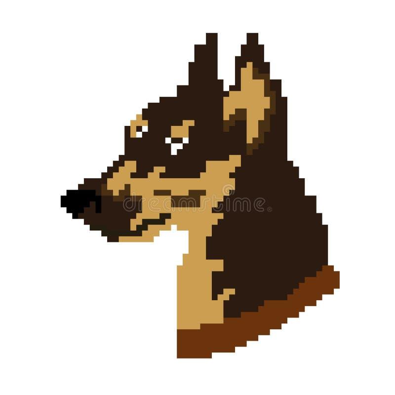 Kaganiec, Doberman psa sylwetka z brązu czesakiem malował w kwadratach i pikslach również zwrócić corel ilustracji wektora ilustracji