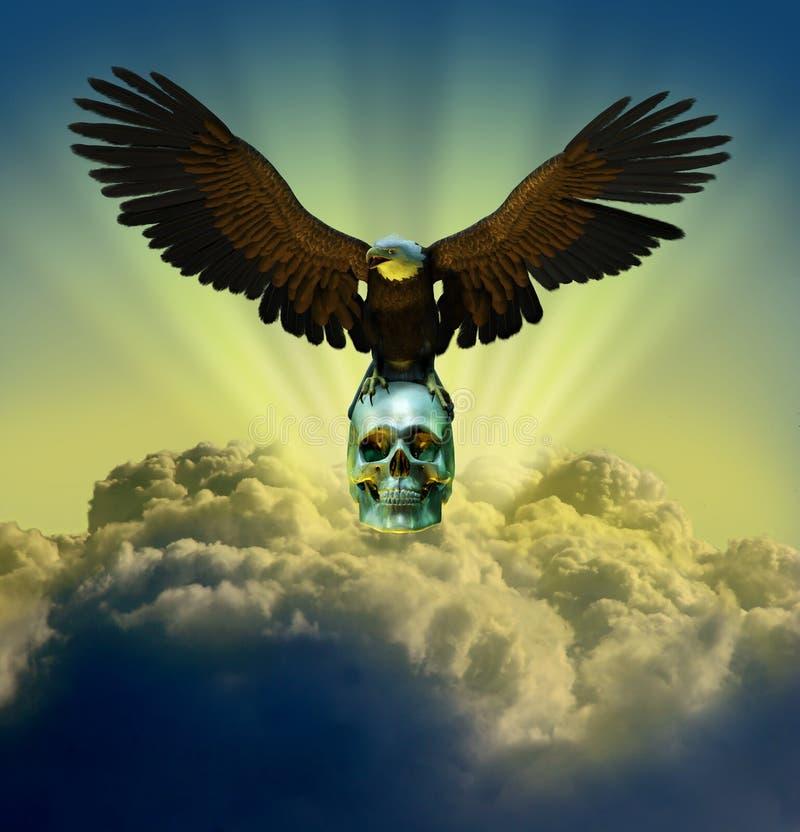Kahler Adler auf Schädel im Himmel lizenzfreie abbildung