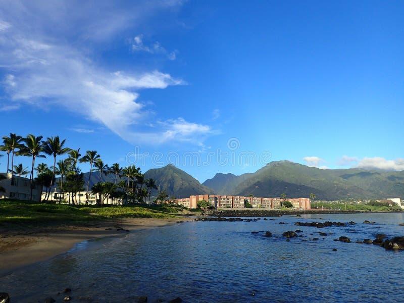 Kahuluibaai met Hotel, kokospalmen, en Iao-Vallei en omringende bergen stock foto's