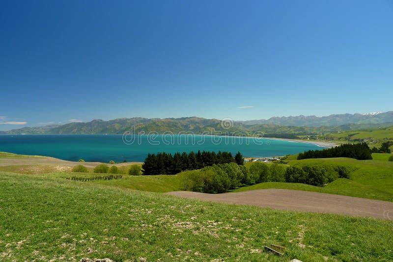 Kaikoura στο νότιο νησί, Νέα Ζηλανδία στοκ εικόνες