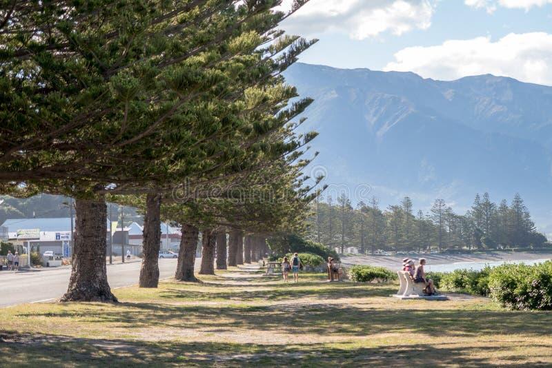 Kaikoura is een stad op de het oostenkust van het Eiland van het Zuiden Nieuw Zeeland royalty-vrije stock afbeeldingen