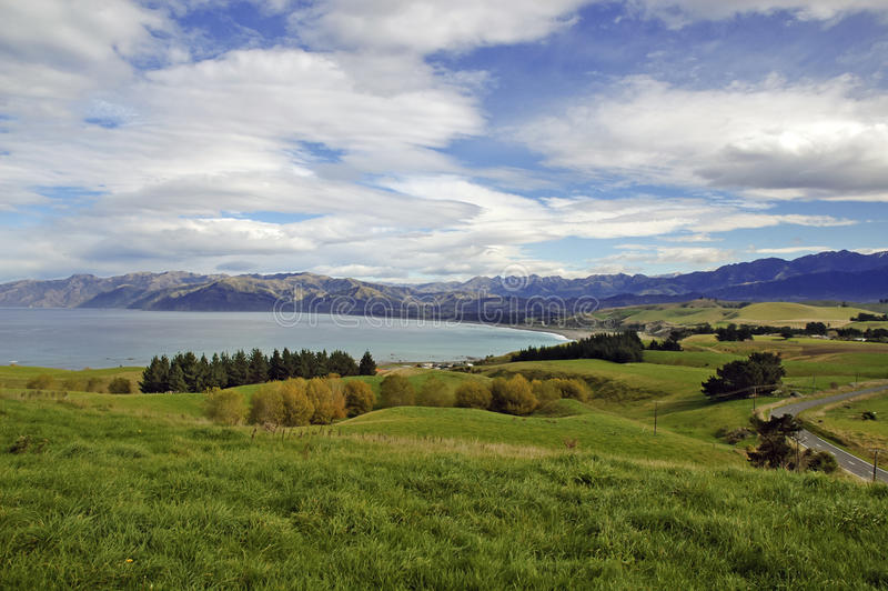 Kaikoura Nya Zeeland royaltyfri bild