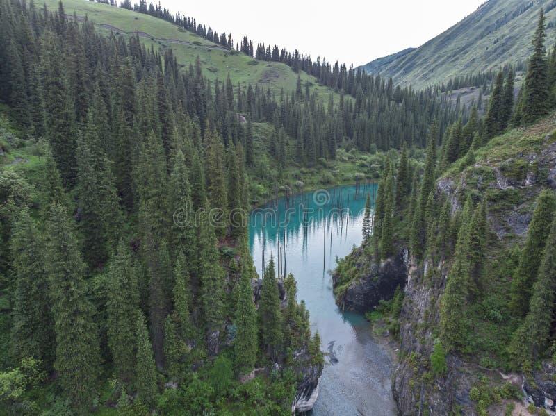 Kaindy湖在作为Tree湖或水下的森林也已知的哈萨克斯坦 免版税库存图片