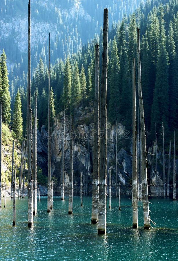 Kaindy Lake with birches in Tien Shan mountain, Akmaty, Kazakhstan. royalty free stock photos