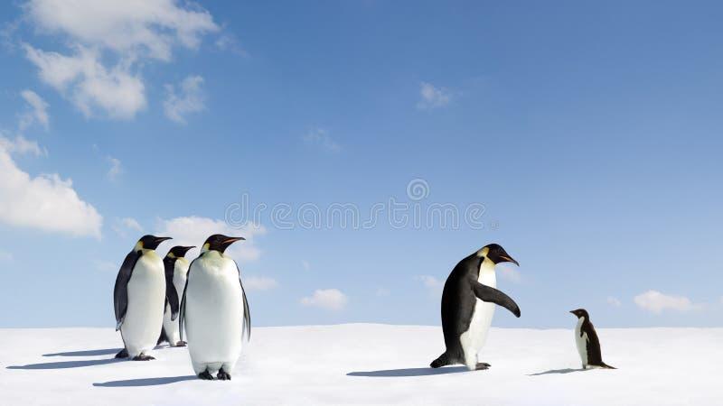 Kaiser und Adelie-Pinguine lizenzfreie stockfotos