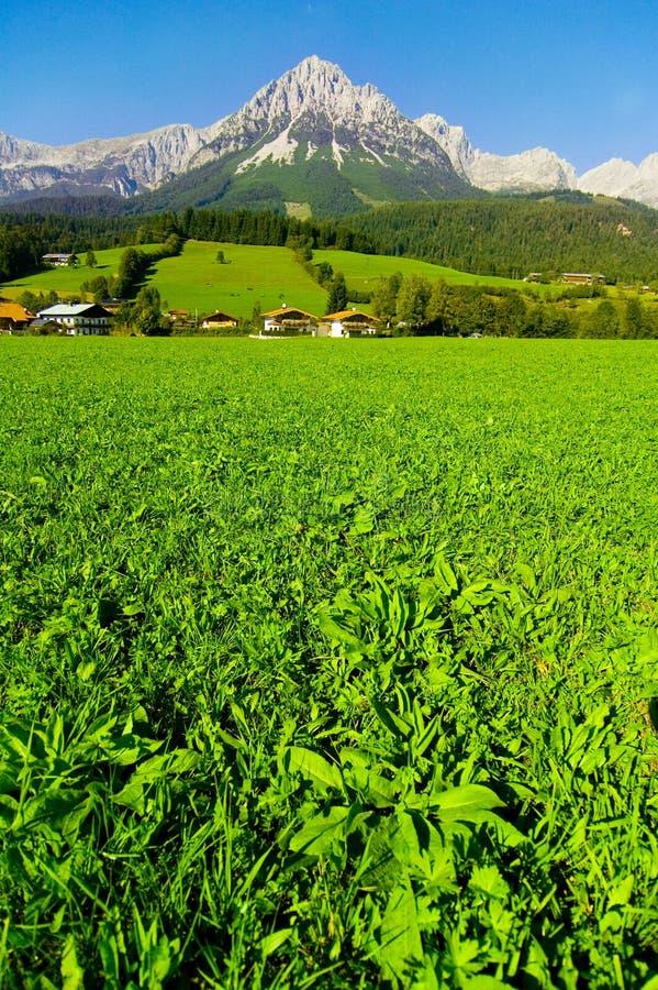 Kaisergebirge em Áustria foto de stock