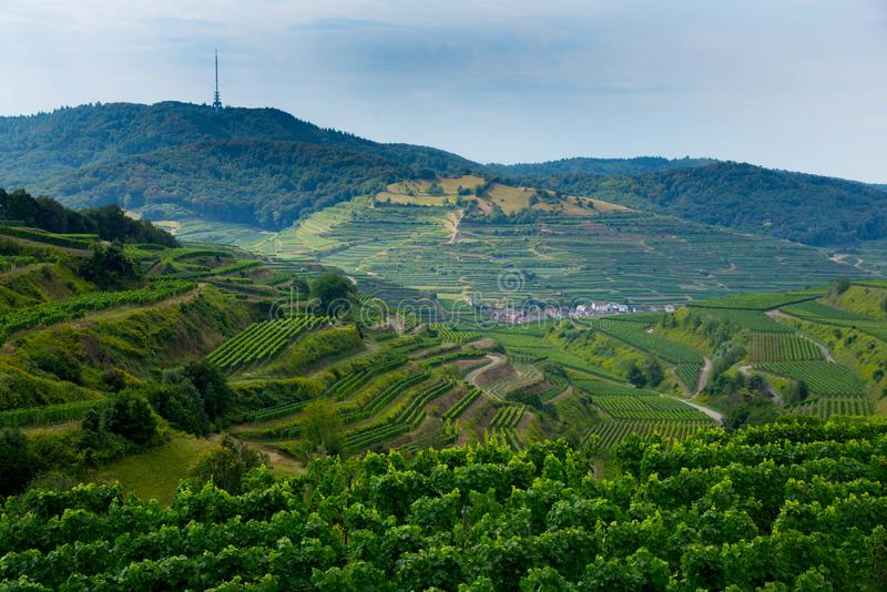 Kaiserstuhl area in Germany. View to the peak called deadhead in the Kaiserstuhl area in Germany stock photos