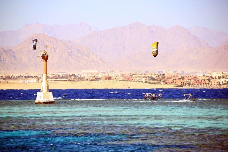 Kaitserfing im Blau bewegt nahe dem Strand wellenartig lizenzfreie stockbilder