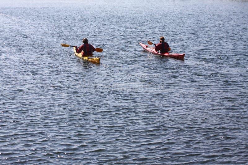 Kajaków rowers paddling morzem, aktywnym wodnym sportem i czasem wolnym kayaking na kajaku, fotografia royalty free