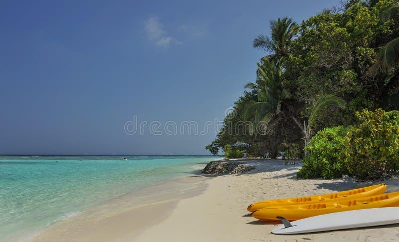 Kajak auf dem Strand Kajaks am schönen tropischen Strand mit Palmen, weißer Sand, Türkisozeanwasser in Thinadhoo-Inseln lizenzfreies stockfoto