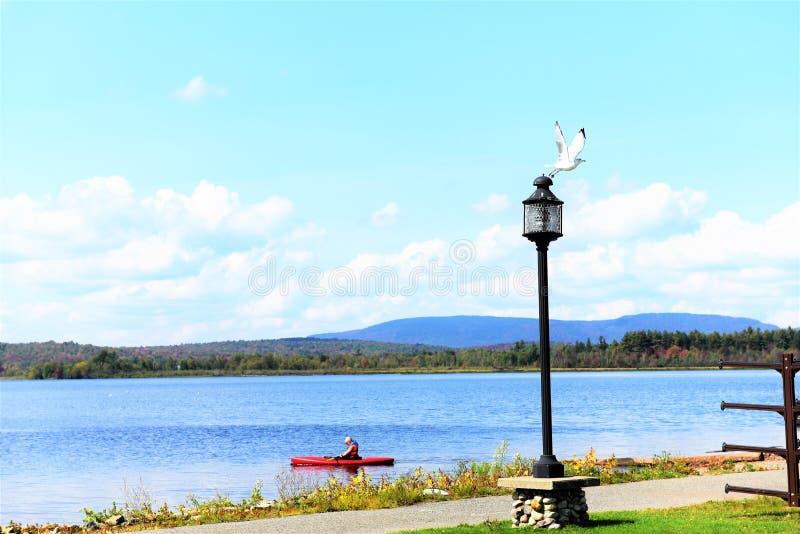 Kajak för strandpromenad för Adirondack tuppersjö royaltyfria foton