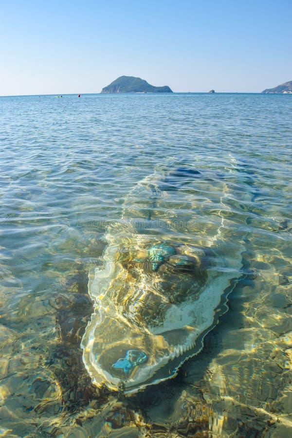 Kajak sommerso sulla spiaggia ш fotografia stock libera da diritti