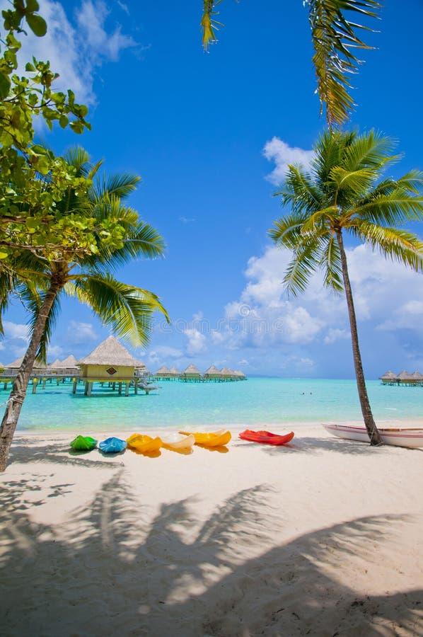 Kajaker på stranden i Bora Bora royaltyfri fotografi