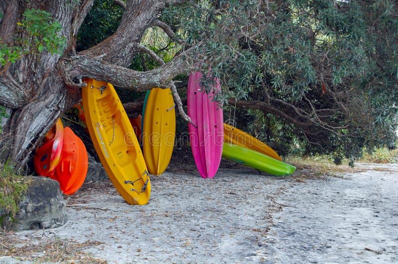 Kajaks coloridos apilados debajo de un árbol imágenes de archivo libres de regalías