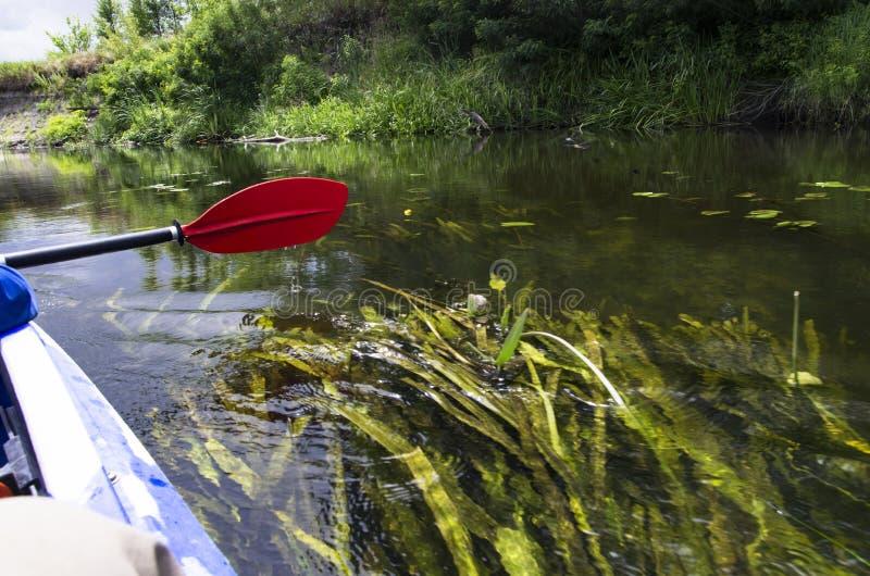 Kajakskovel ovanför vattnet royaltyfria foton