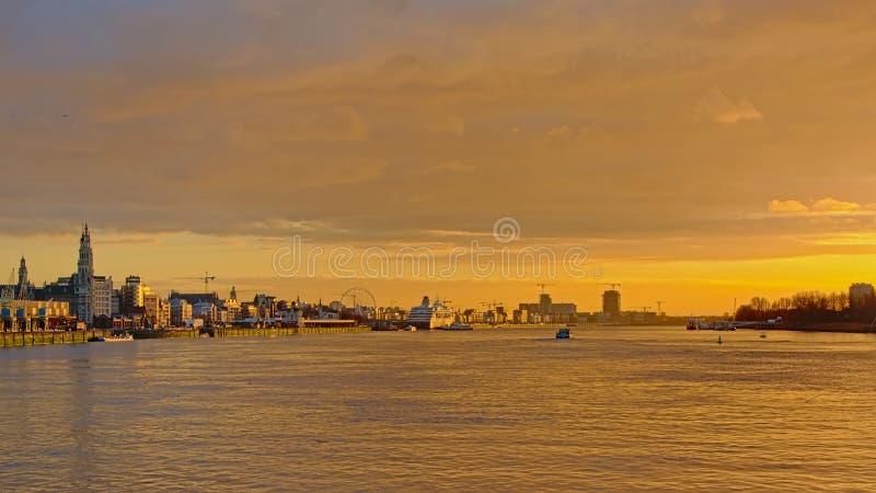 Kajer av floden Scheldt i Antwerp, med domkyrkan och andra torn i disigt varmt solnedgångljus fotografering för bildbyråer